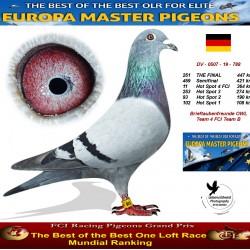 251th place - Brieftaubenfreunde OWL Team 4 FCI Team B
