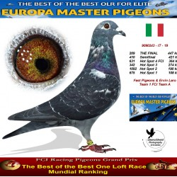 209th place - Fast Pigeons & Ervin Laro Team 1 FCI Team A