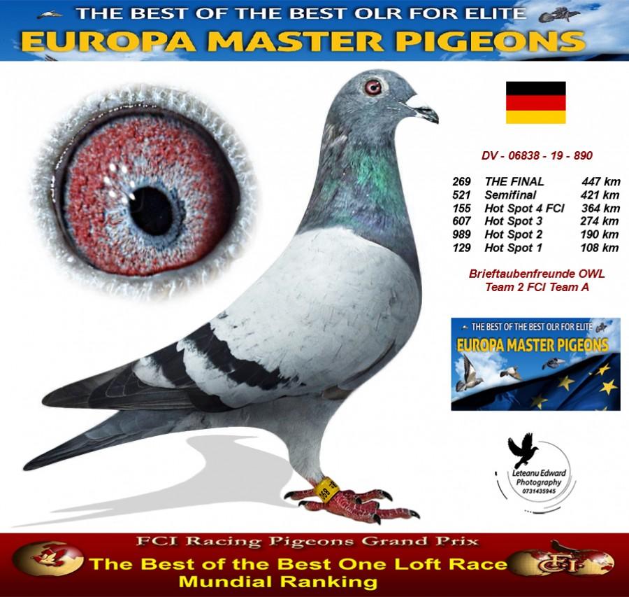 269th place - Brieftaubenfreunde OWL Team 2 FCI Team A