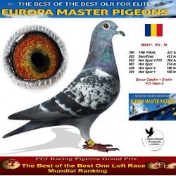 290th place - Bucur Catalin + Evelin FCI Team A