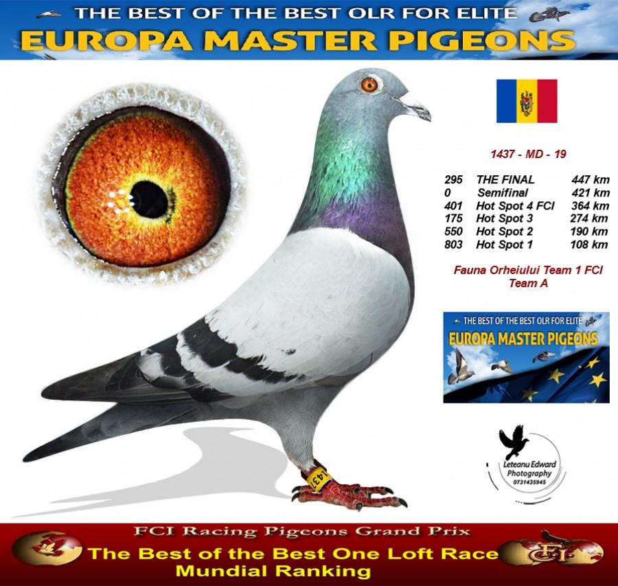 295th place - Fauna Orheiului Team 1 FCI Team A