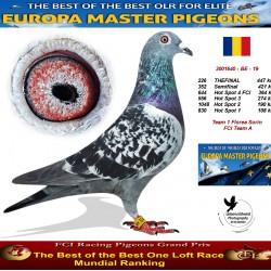226th place - Team 1 Florea Sorin FCI Team A