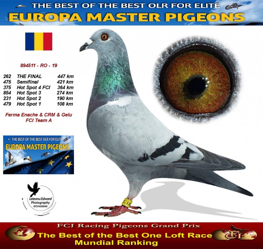 262th place - Ferma Enache & CRM & Gelu FCI Team A
