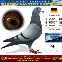 268th place - Rohlig & Bukowski L Team 3 FCI Team A