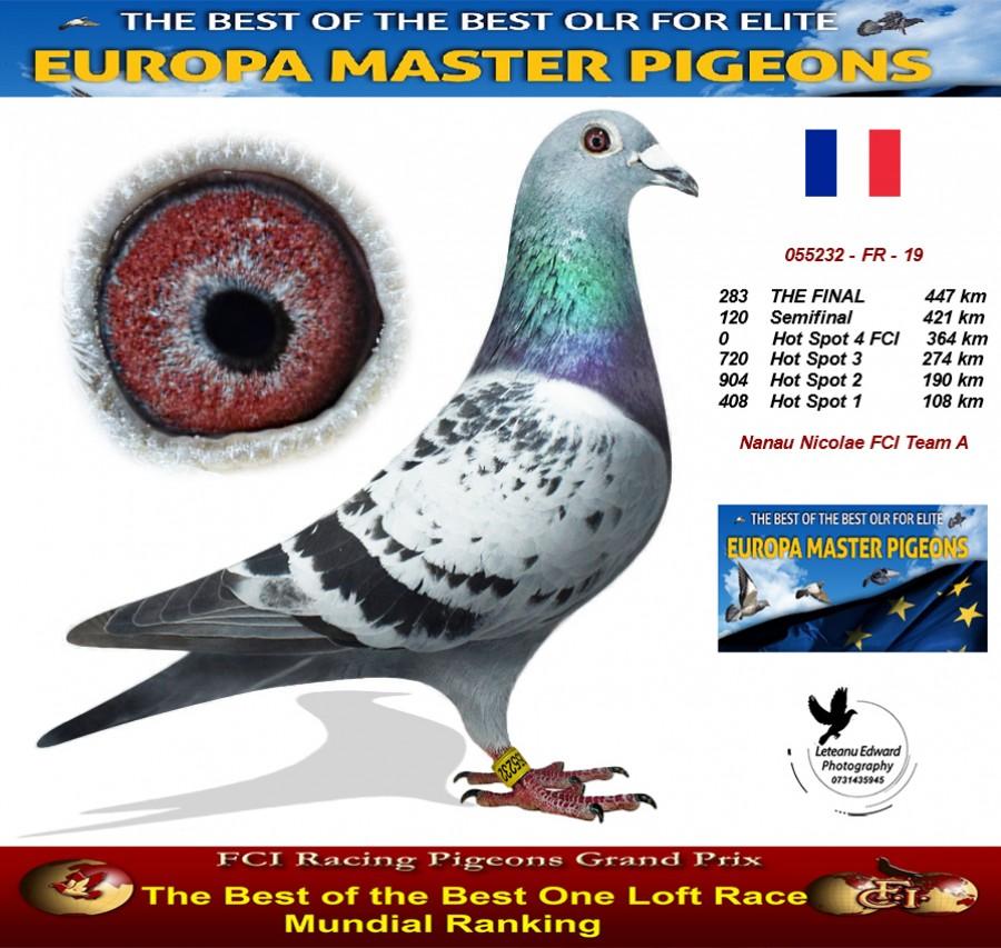 283th place - Nanau Nicolae FCI Team A