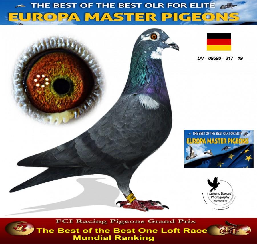 Auction DV-09580-317-19 - Team Rodertalflieger FCI Team A