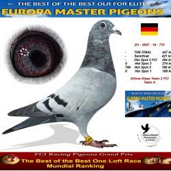 Auction DV-0507-19-775 - Alfons Klaas Team 2 FCI Team A