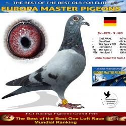 Auction DV-06723-19-9519 - Dieter Siebert FCI Team A