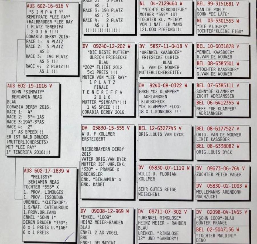 Auction AUS 602-19-1016V - Beniamin Neag