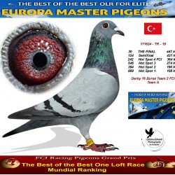 30th place - Derby 16 Bursa Team 2 FCI Team A