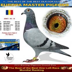 17th place - Picleanu Sorin Team 2 FCI Team A