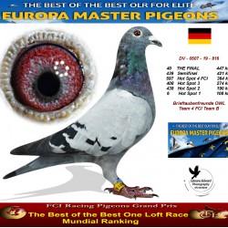 40th place - Brieftaubenfreunde OWL Team 4 FCI Team B