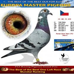 13th place - Roman Zlicar Team 3 FCI Team A